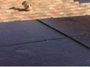 autoconsommaion solaire Toulouse